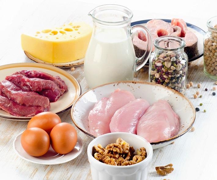 белок в питании